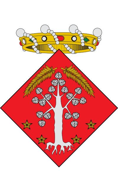 Escudo de Albi, L'