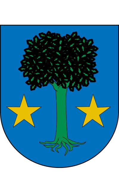 Escudo de Allín/Allin