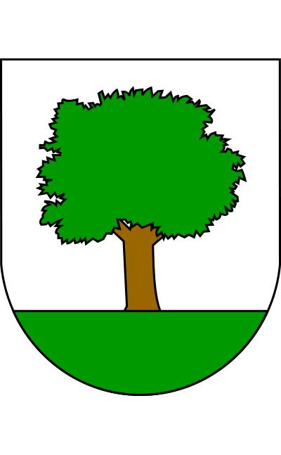 Escudo de Abaltzisketa